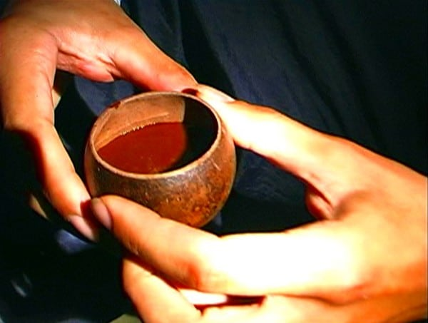Ayahuasca - rituales alucinógenos