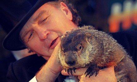 El Día de la Marmota — Historia y Ceremonia