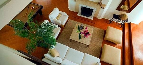 Plantas para purificar el aire de tu hogar for Como purificar el aire contaminado