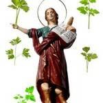Oración a San Pancracio