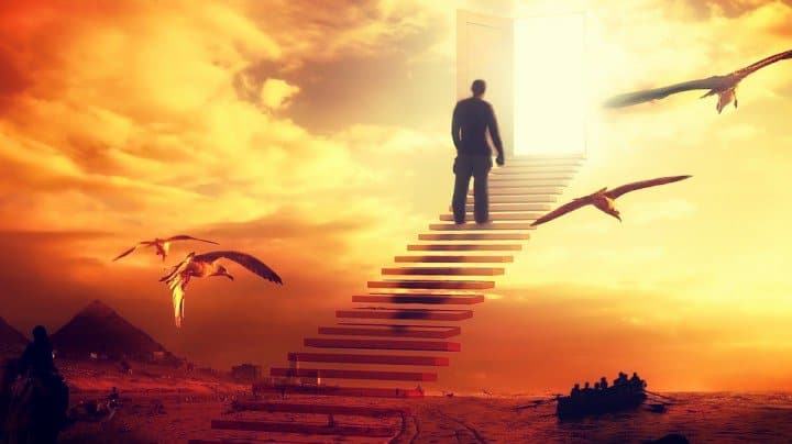 Siguiendo los pasos de un Dios que no obliga a nadie