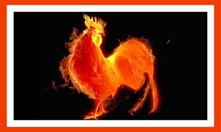 Nuevo Año Chino – El Gallo llegará lleno de cambios inesperados y alegría