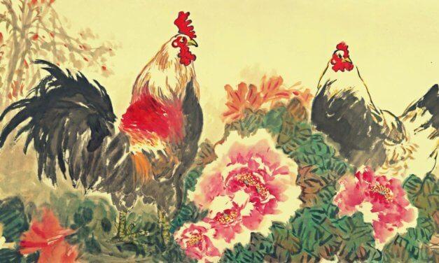 Consejos para Sanar Heridas – Encontrando Armonía en el Año del Gallo