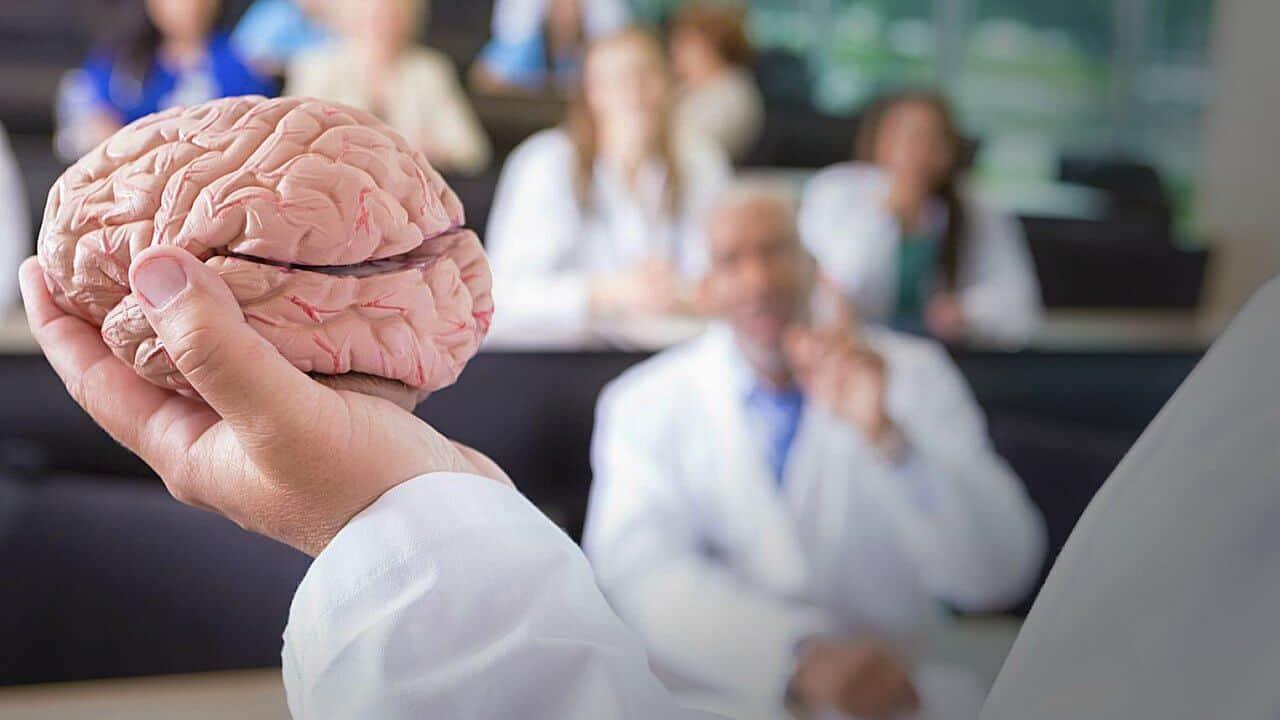 El cerebro del hombre pesa más, pero…