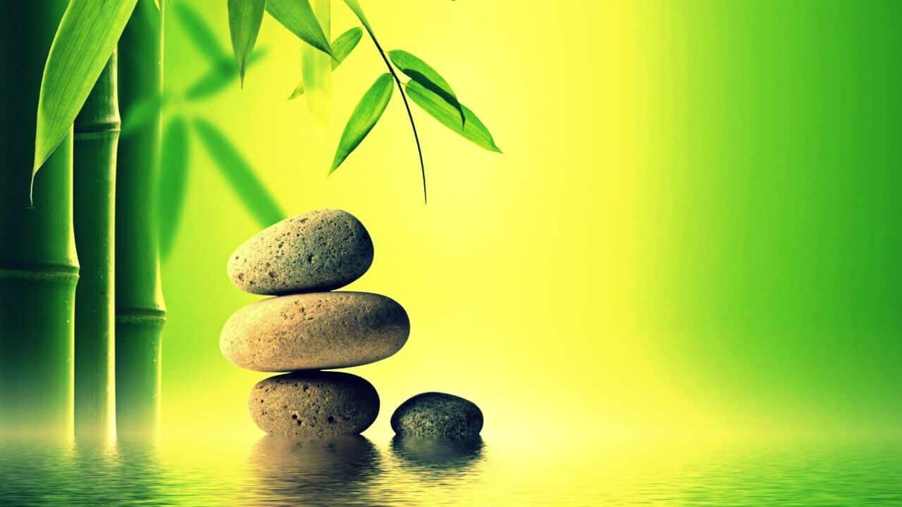 La paciencia es clave para ver los frutos de lo que has sembrado