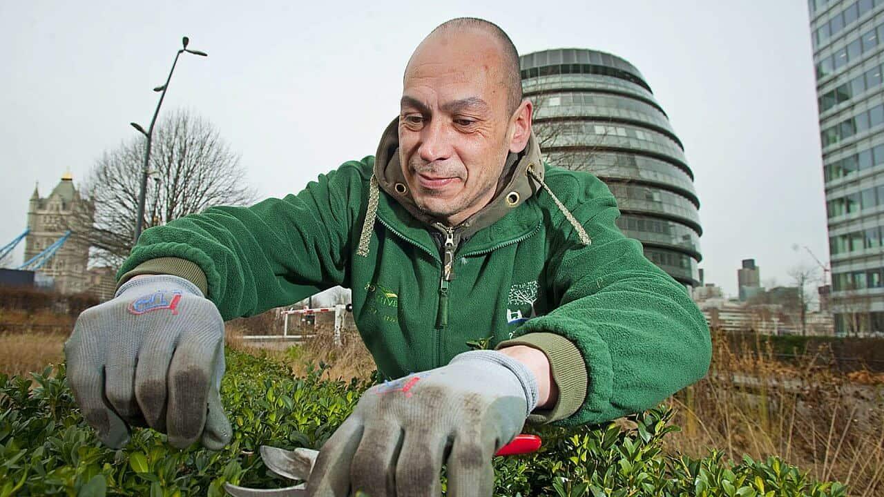 El Buen Jardinero – Reflexión