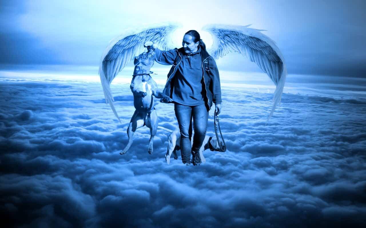 ¿Eres un Ángel terrenal? ¿Sientes que eres diferente a los demás?