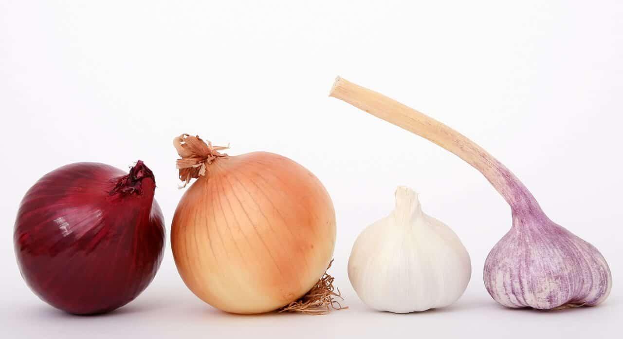 Cáscara de Cebolla – Propiedades curativas y beneficios